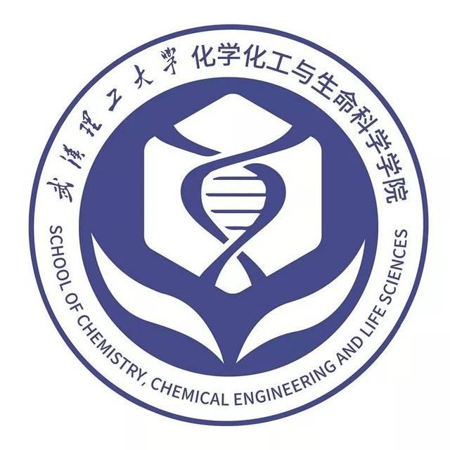 2-1 2-2 寓意:logo主要以苯环(六边形),dna双螺旋结构为主要设计元素图片