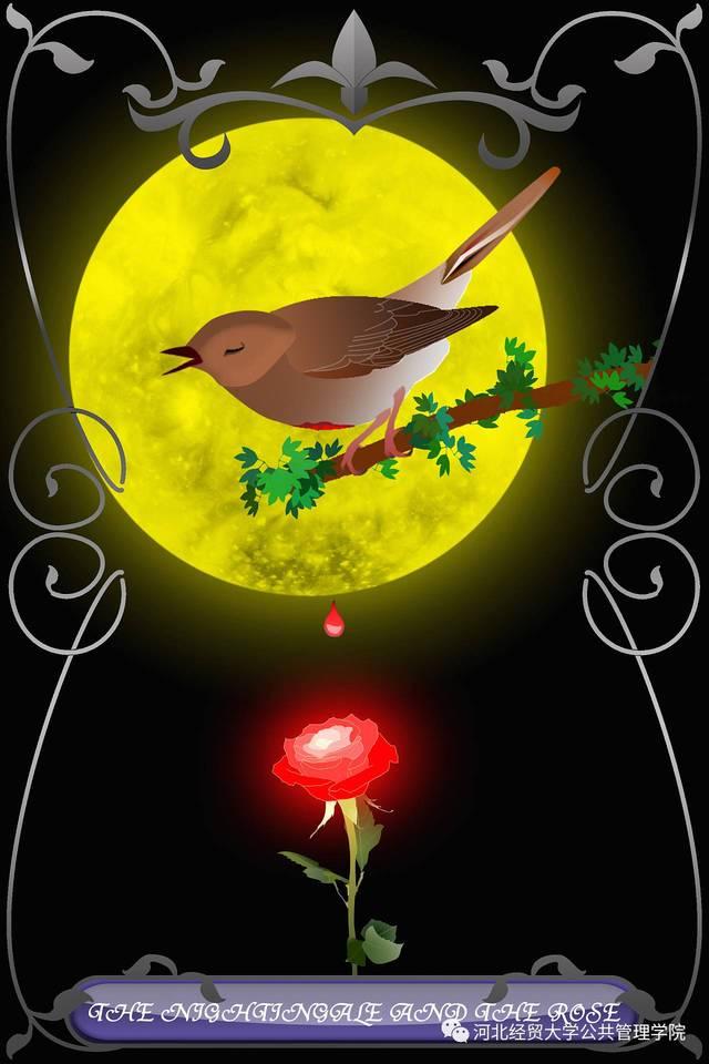 夜莺与玫瑰v夜莺软膏硫阴虱擦了洗澡可以吗图片