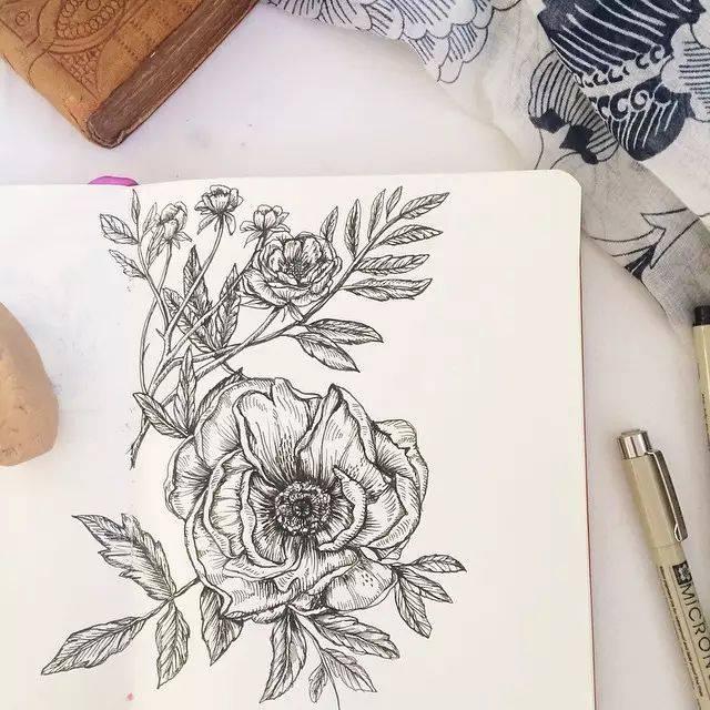 就更能从中悟出什么 喜欢这样简单色调的线描图吗 喜欢就拿针管笔画图片