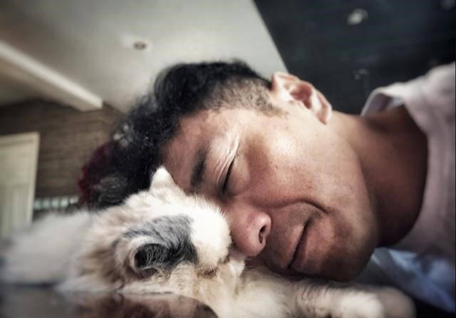 淫淫网狠狠射人与动物_壁纸 动物 狗 狗狗 640_446