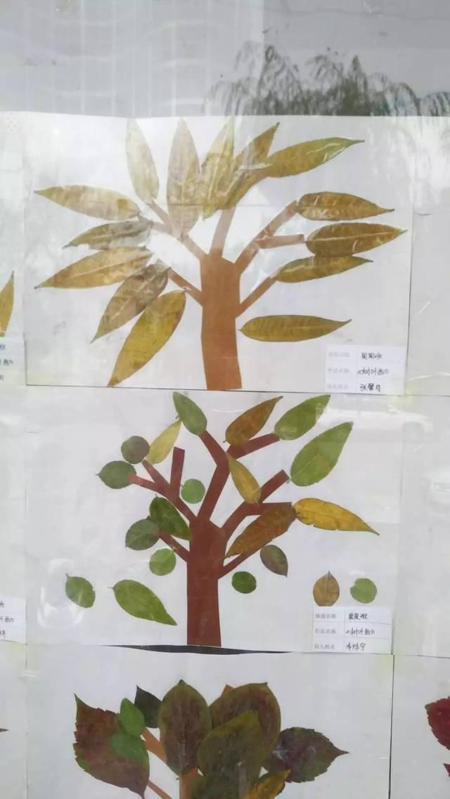 【黄河宝贝幼儿园】手工制作---树叶精灵