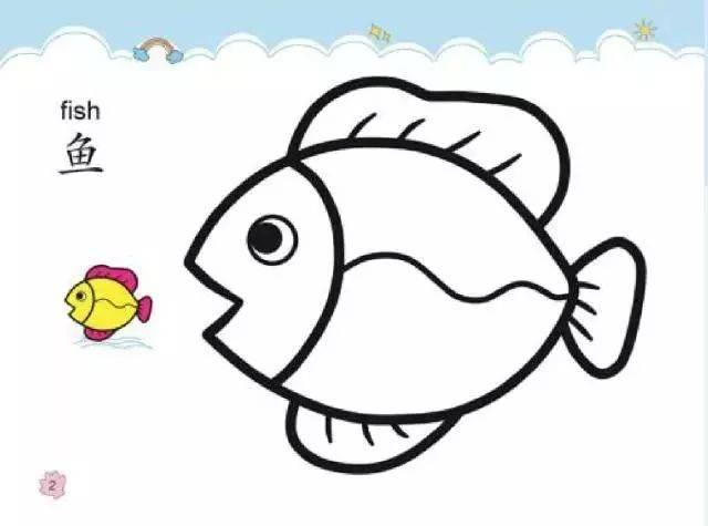 鱼类简笔画彩色