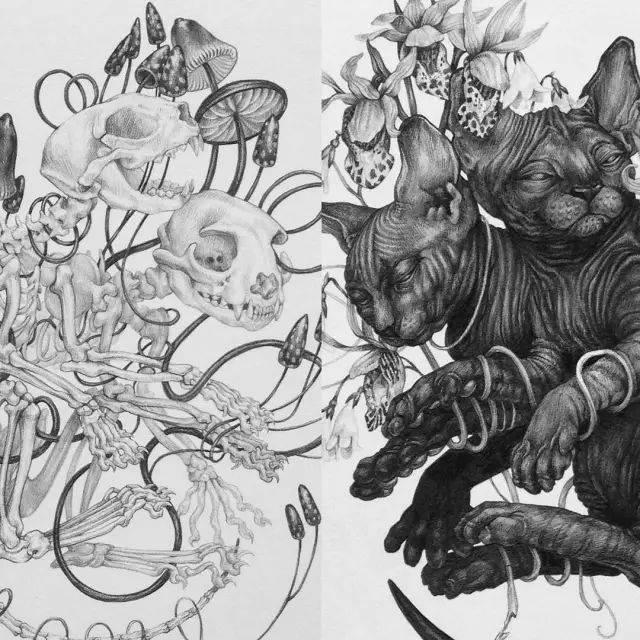 素描可爱卡通动物画