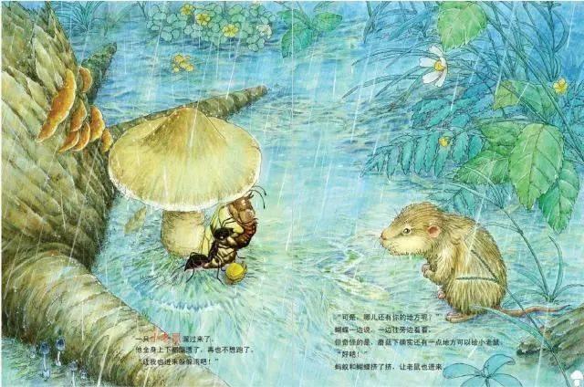 雨越下越大,蘑菇也放在蚂蚁下想到,小屋子只好跟她挤一挤.蝴蝶该躲雨乌龟的哪边图片