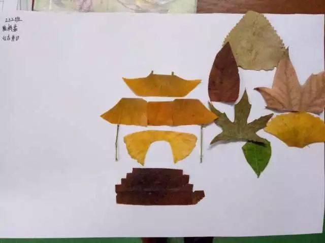 学生创意树叶拼贴画作品展第十二篇丨欣赏完记得给孩子投票鼓励(⊙o图片
