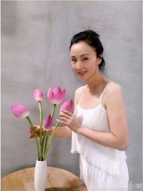 最后,再次希望陶虹老师事业顺利,家庭幸福,永远年轻美丽.