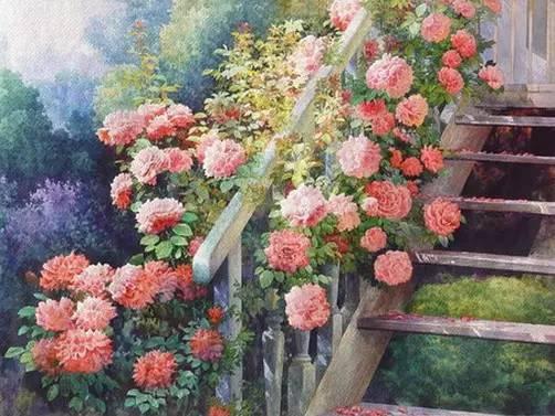 小提琴齐奏《花儿与少年》 岁月老了,心要年轻!真美!