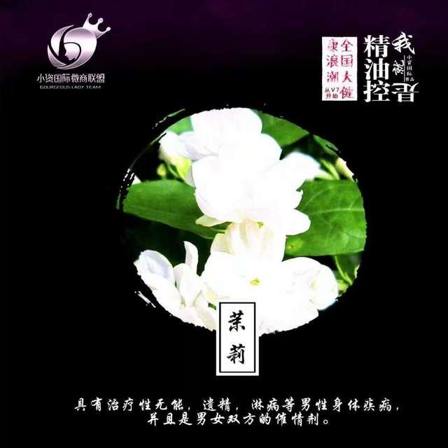 而v7是由八种纯植物萃取,其中的玫瑰精油可以促使女性爱液分泌是女性