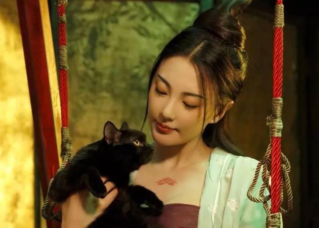 贱奴舔爽本小姐的骚逼就不杀你_像张雨绮小姐姐这种长得好看的,也是可以给本喵撸一撸毛的.