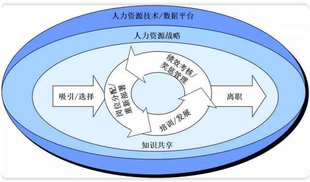 建筑企业的组织结构设计和人力资源管理
