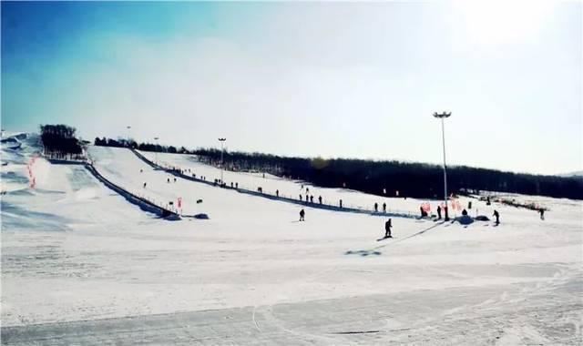 【周边游】本月27日,滑雪,动物园 熊猫馆门票统统27元