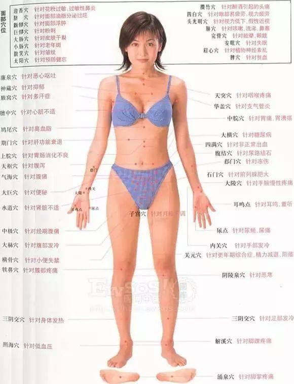 女裸体正面�_人体按摩穴位示意图(女)