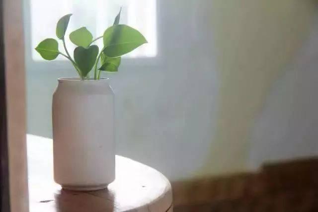 【手工课堂】矿泉水瓶和饮料瓶改造成的9种很有家居特色的花盆教程
