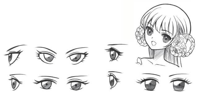 眉毛走向图手绘