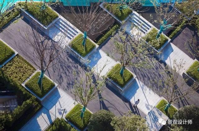 富于丰富层次广场的树阵泳池婚礼区的改建,是这个平面较为重要的景观项目设计师如何做图片
