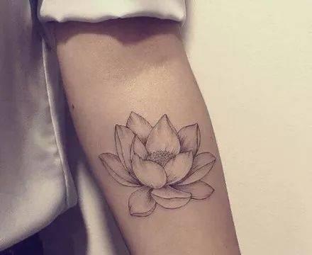 小清新·莲花纹身图片