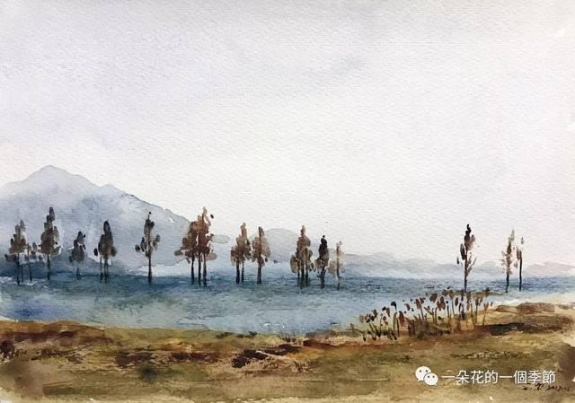 余姚四明湖的红杉林图片