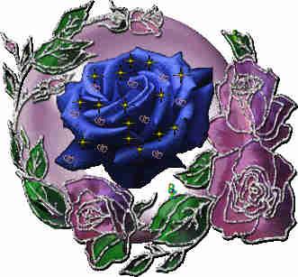 二胡演奏:《花好月圆》是元旦最美好的祝福,请您收下!