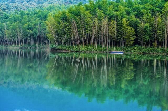 24个省(市区)115个中国森林氧吧,来看看你的家乡有几个?图片