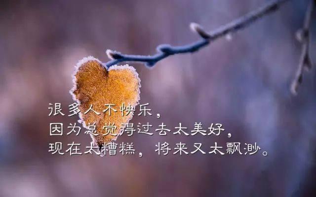 4,真正的快乐,不是狂喜,亦不是苦痛,主观的来说,它是细水长流,碧海无