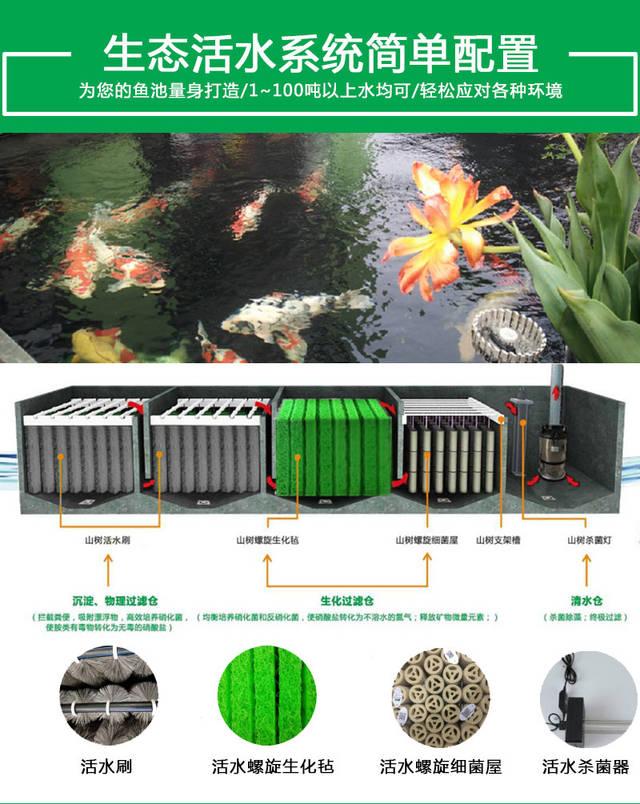 景观鱼池的设计建造涉及到土建基础,过滤系统,假山驳岸等,其中鱼池图片