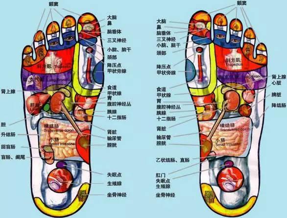 脚底穴位图解大全及按摩方法