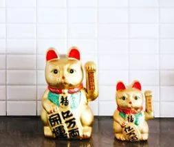 支付宝集五福又来了,这家摆满招财猫的店不屑一顾图片