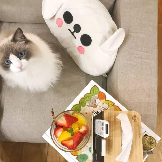 种草|日本海淘值得买的6款高颜值v实体好物唐山实体娃娃实体店图片