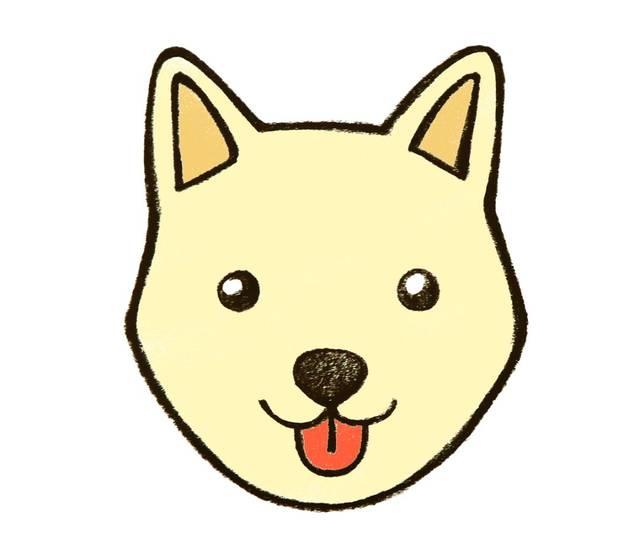 最后涂上漂亮的颜色,一只可爱的小狗就完成啦!图片