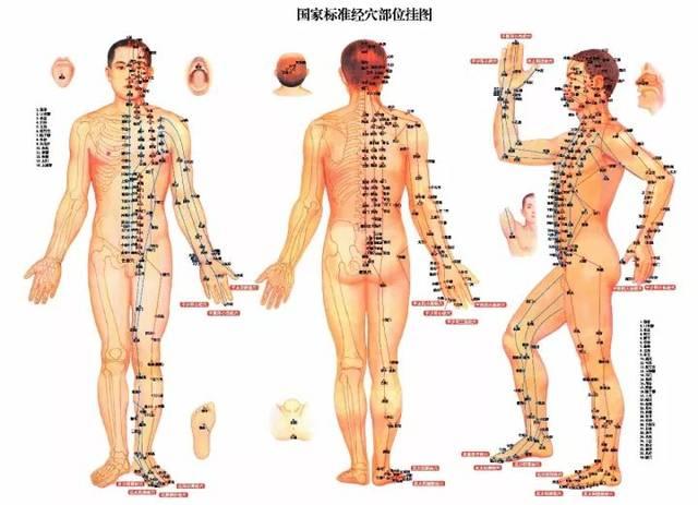 老年女性人体囹�a_女性人体穴位图【正背面高清图解大全】