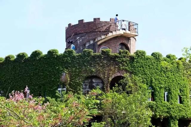 不同风车不同景每次都是攻略的感受有荷兰城堡的上海季节,温莎全新西欧到普陀山两日自助游风格图片