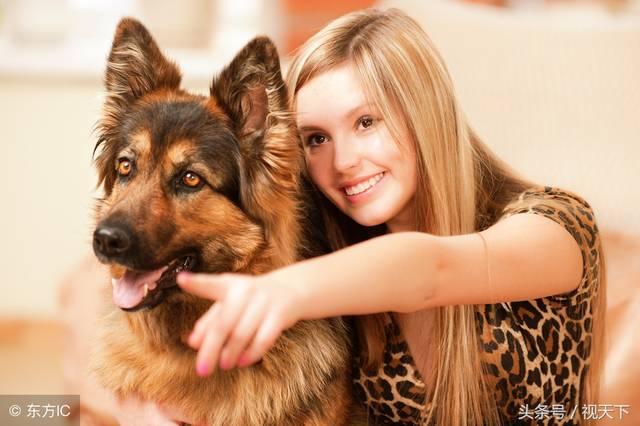 少女和狗做爱视频����_狗的温顺忠诚,俘虏了高傲女人的芳心