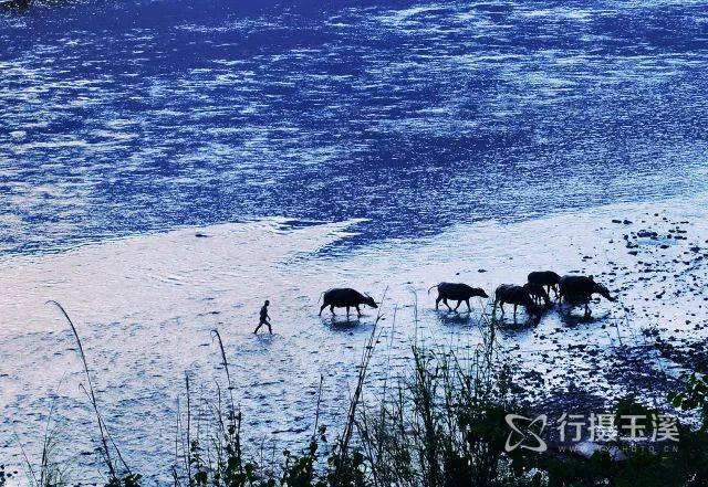 或滚滚流淌,在山间谷地之中,滋润万物生长;玉溪的江河之美,美在山水相