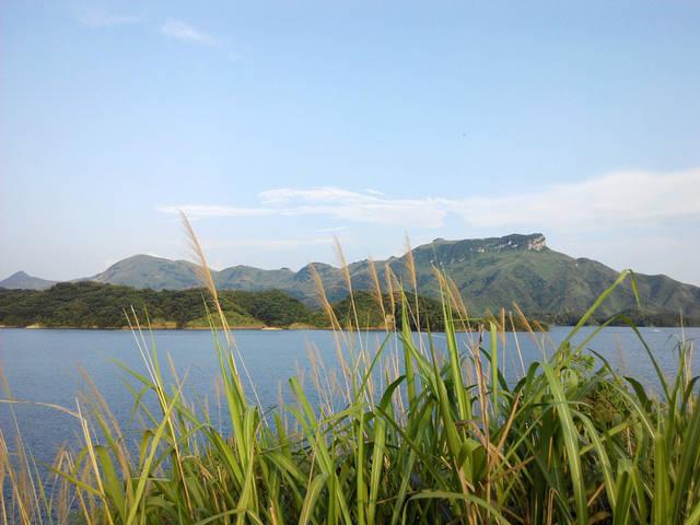 水库村来自于陈正松的故乡,佳景荟萃兴崇阳