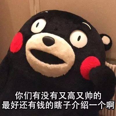 熊本熊表情包 i 着急脱单的你图片