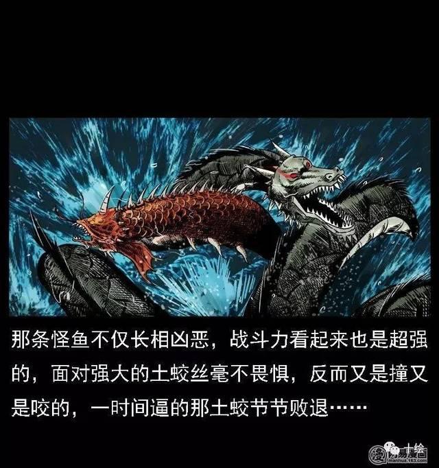 每日漫畫故事《斗土蛟②》土蛟之戰進入激情時刻圖片