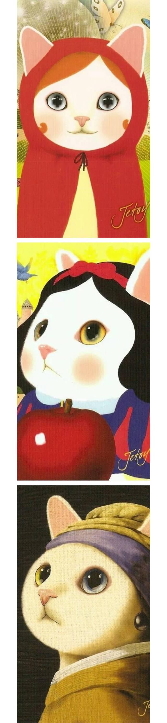 韩国音乐系女生放弃专业背景,竟是因为猫
