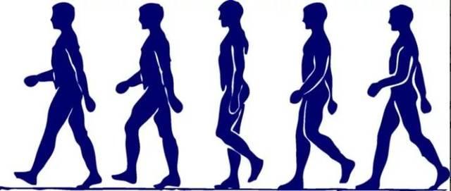 那么正確的走路姿勢是什么樣呢?圖片