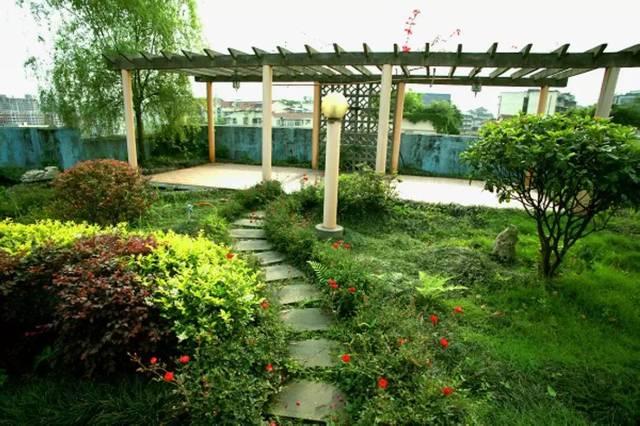 3. 屋顶菜园,果园图片