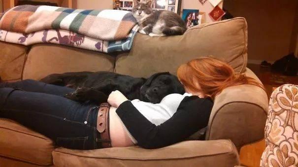 撸死妺五月色_你根本不爱我,你跟我在一起只是想撸我的狗!