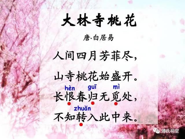 古文朗读|大林寺桃花(白居易)图片