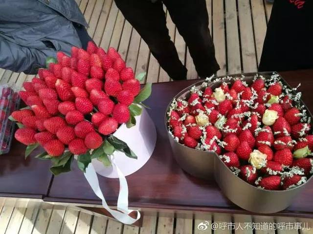 【约起】过个不一样的周末!①呼和浩特第二届草莓文化节开幕啦!吃草莓去~②饕餮福利 呼和浩特龙鱼论坛 呼和浩特龙鱼第7张