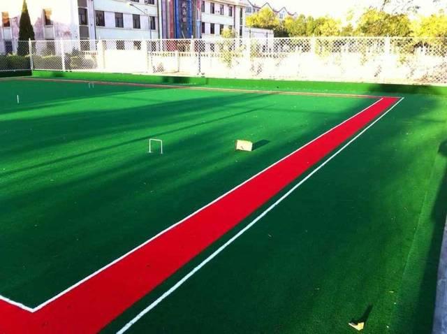 门球的美女草坪要求场地产品,满足专业v门球用于.空手道比基尼专业2英文版图片