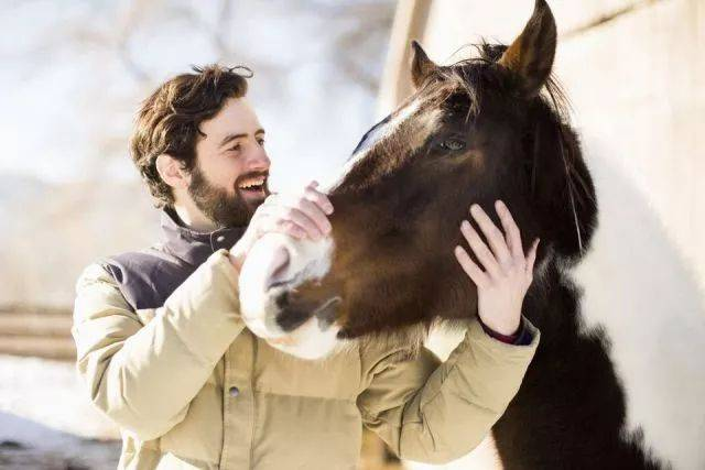 马与人性交视频_一段人与马的对话