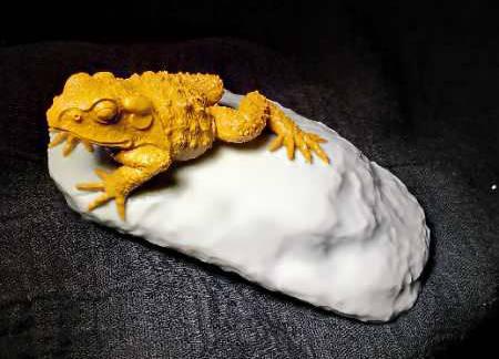 在创作这件《金蟾》的玉雕作品时,陆留远大师做了精细的构思,除了
