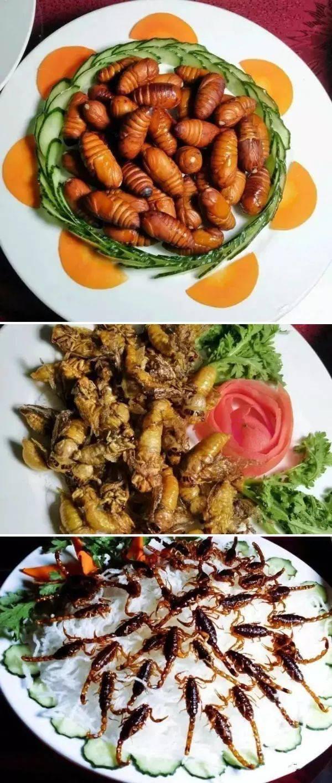 """美食之外,只有""""日照银""""知道的海鲜!美食武汉文艺图片"""