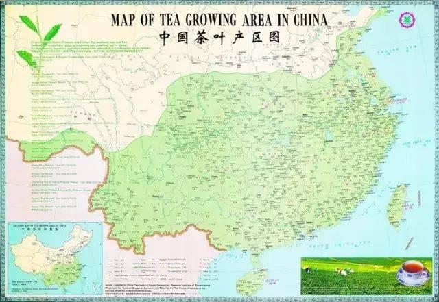因为这 七山一水两分田,浙江也成为中国 绿茶主产区,也是 龙井茶唯一图片