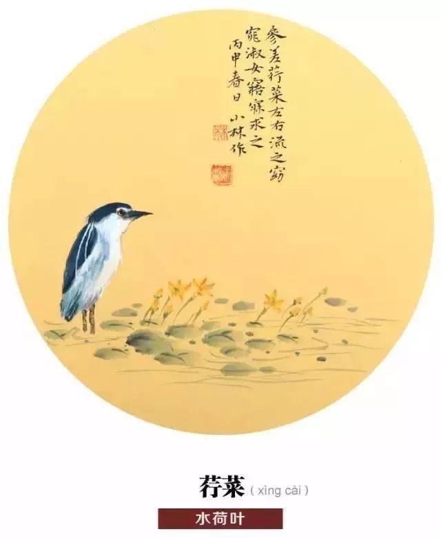 小林老师还对老广州情有独钟图片