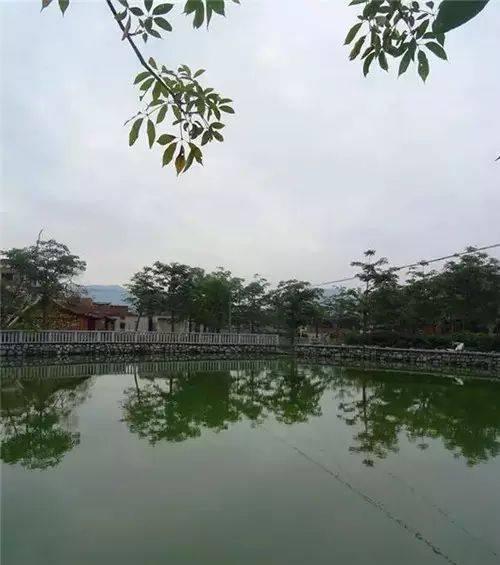 同安区  历史历史历史 梵天寺 翔安区  潜力潜力潜力 地铁 3号线,4号