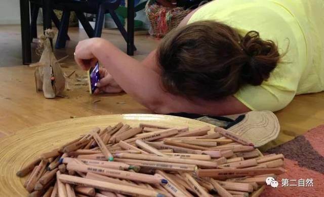 幼儿手绘树皮怎么画